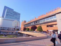 仙台市のエリア紹介